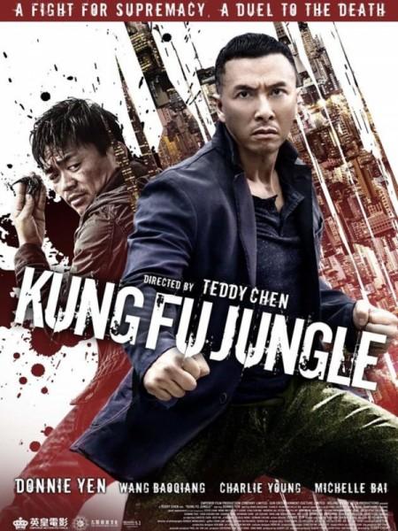 Kế Hoach Bí Ẩn – Kung Fu Jungle Bản Đẹp Full HD (2014)