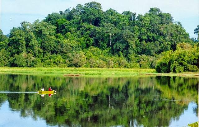Kết quả hình ảnh cho vườn quốc gia phú quốc thực vật