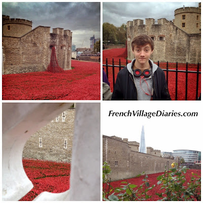 French Village Diaries The Tower of London Remembers 2014 TowerPoppies First World War