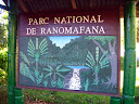"And finally we arrived at Ranomafana National Park! (Ranomafana means ""hot water"", and it's also the name of the nearest town.) It's a recently created national park, but it has lemurs that are found nowhere else in the country and the world, and I believe it has the second-highest number of visitors of any national park in Madagascar."