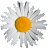 Suzy 'D avatar image