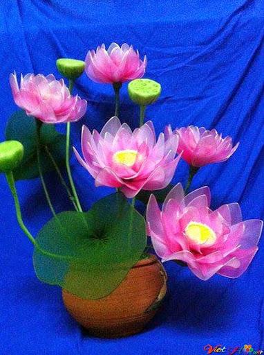 mẫu hoa sen bằng vải voan 1