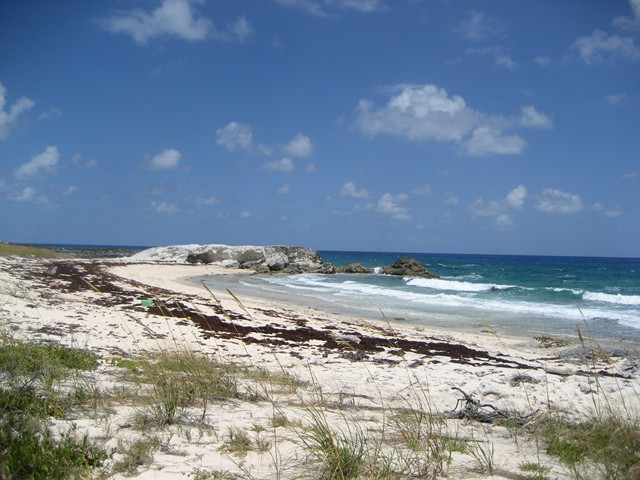 beach on Exuma Sound, Great Guana Cay near Black Point