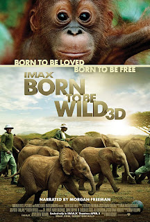 Born To Be Wild movie
