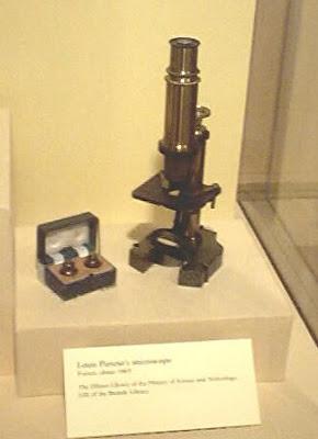Louis Pasteur Sang Pelopor Mikrobiologi 2