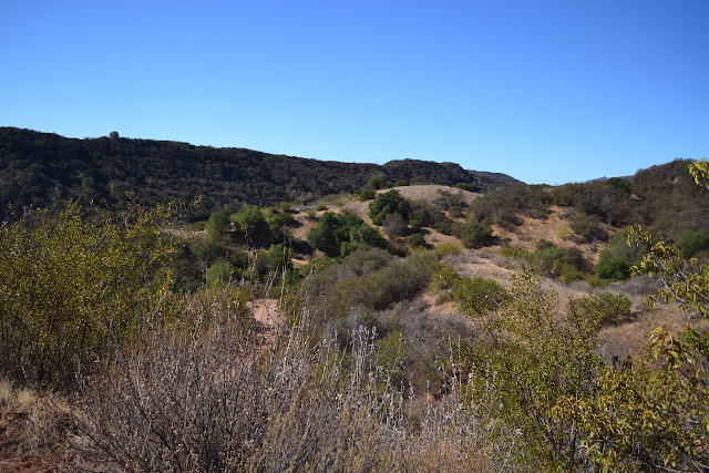 Wills Canyon