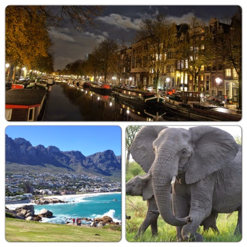 Shots from Amsterdam and South Africa