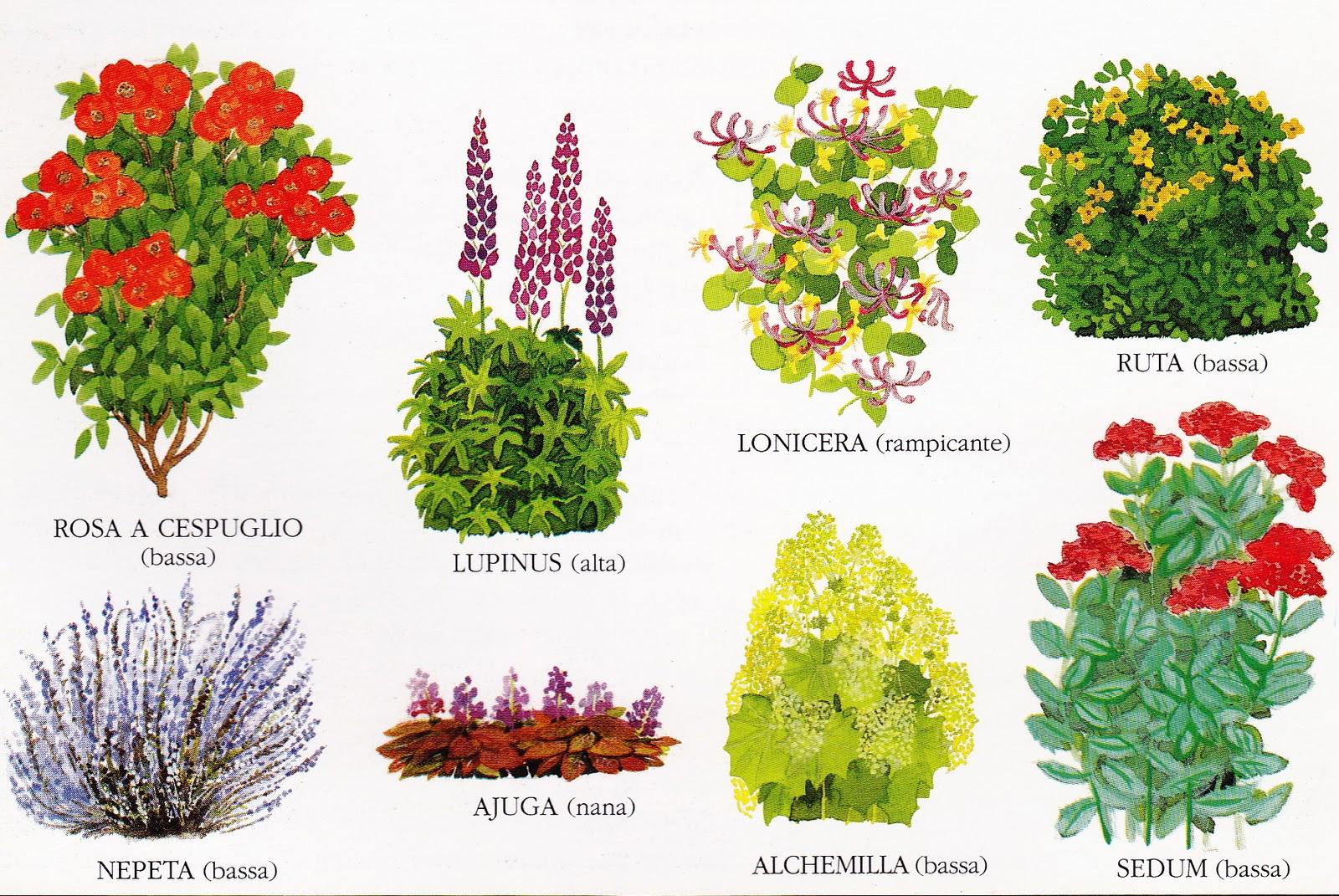Come realizzare un bel giardino outdoor duestate i nostri - Creare un bel giardino ...