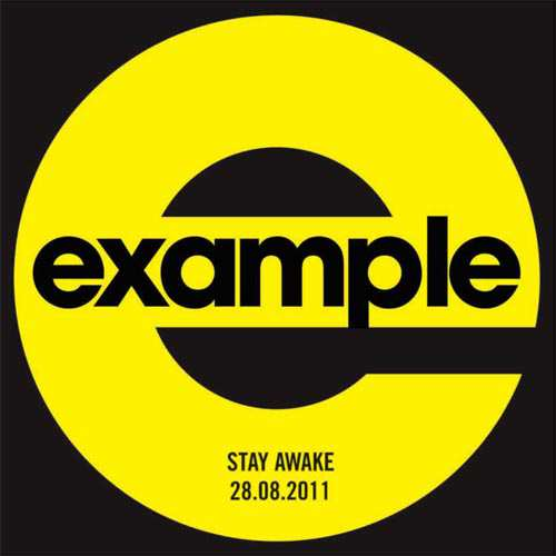 12 Inch Vinyl Single Import Example Stay Awake