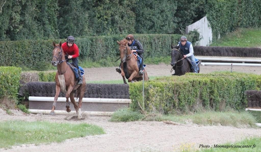 Photos Lamorlaye entrainement obstacle 14-08-2014 IMG_2888