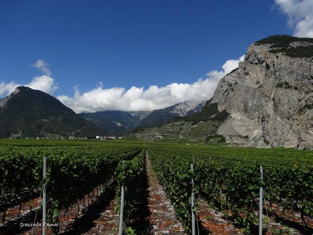 passeando - Passeando pela Suíça - 2012 - Página 9 DSC02098