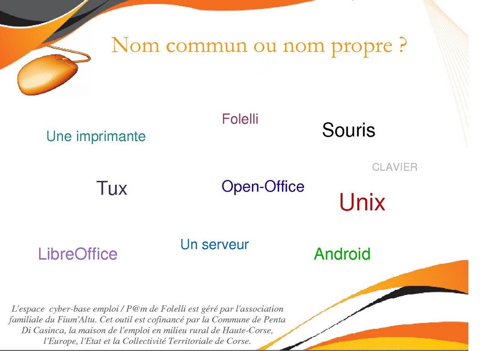 les noms propres et les noms communs pdf