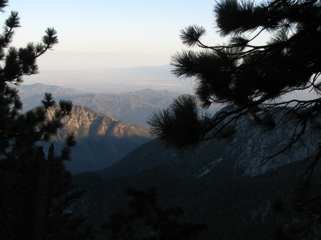 mountains obscured some by pine boughs