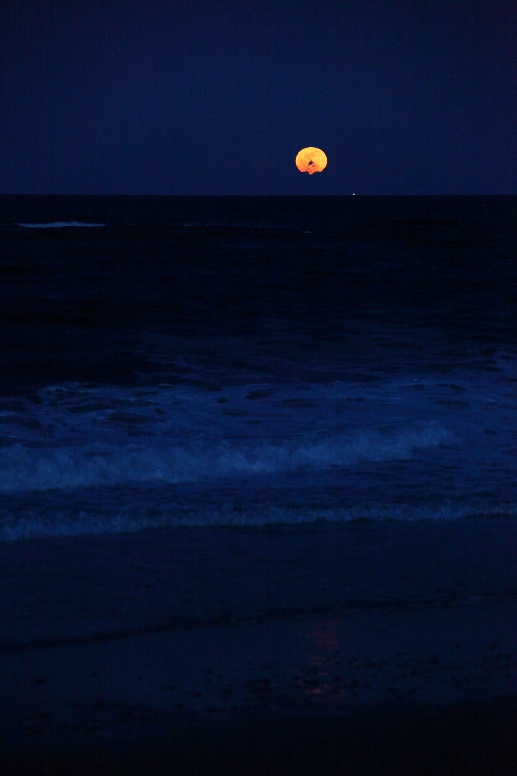 Family Portraits At Cape Cod Beaches Full Moon Night At