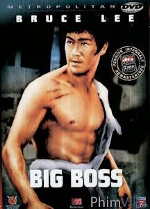 Đường Sơn Đại Huynh - The Big Boss poster