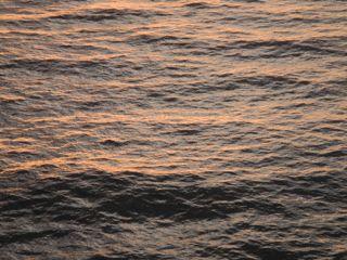 DSCN7389-2012-12-4-09-07.jpg