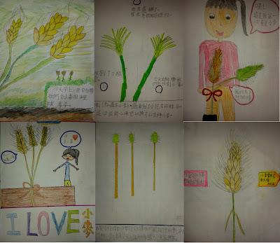 【樂活教學】親土近農,是一條比愛更豐盈的路