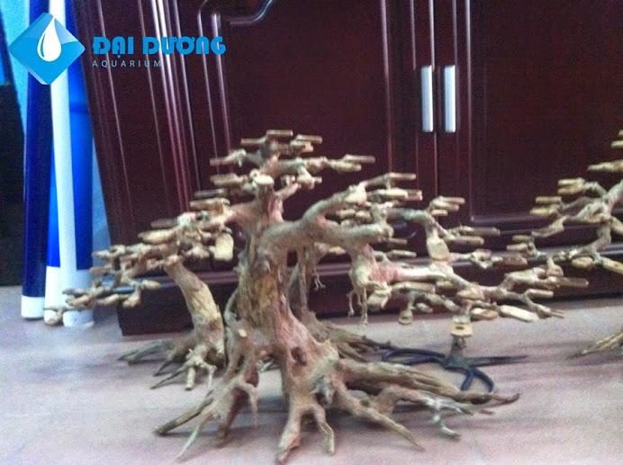 Lũa bonsai hồ cá thủy sinh 5