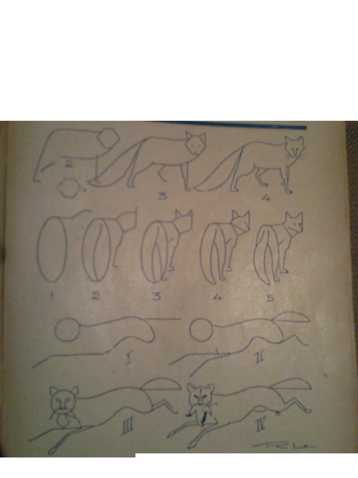 dessins astuces pour debutants dessiner un renard. Black Bedroom Furniture Sets. Home Design Ideas