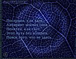Labyrinth, хайбун, урус-хайбун, танка