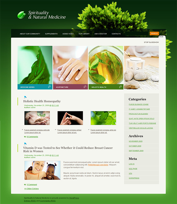 Spirituality and Natural Medicine Organic WordPress Theme