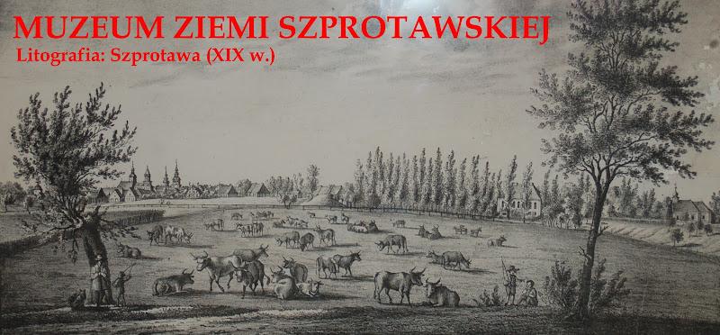 Szprotawa Muzeum Ziemi Szprotawskiej / Museum Sprottau / Galeria Zbiorów Regionalnych