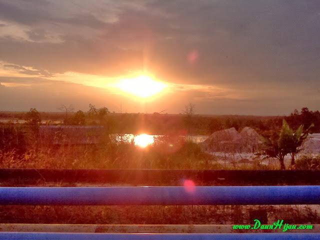 Daun Hijau dan matahari yang mulai tenggelam