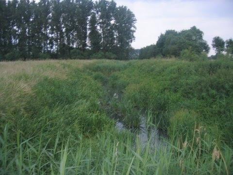 """100km """"Mega-Sloebertocht"""" à Zingem (B): 8-9 juin 2012 2008%25252013%252520juni_Mega%252520Sloebertocht%252520100km%252520024"""