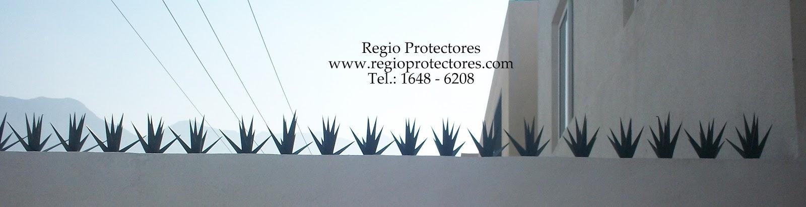 Protectores para ventanas, Fracc. Las Lomas sector Jardines, Picos