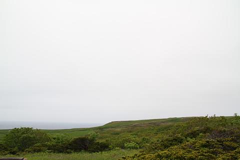 焼尻島の風景 その2