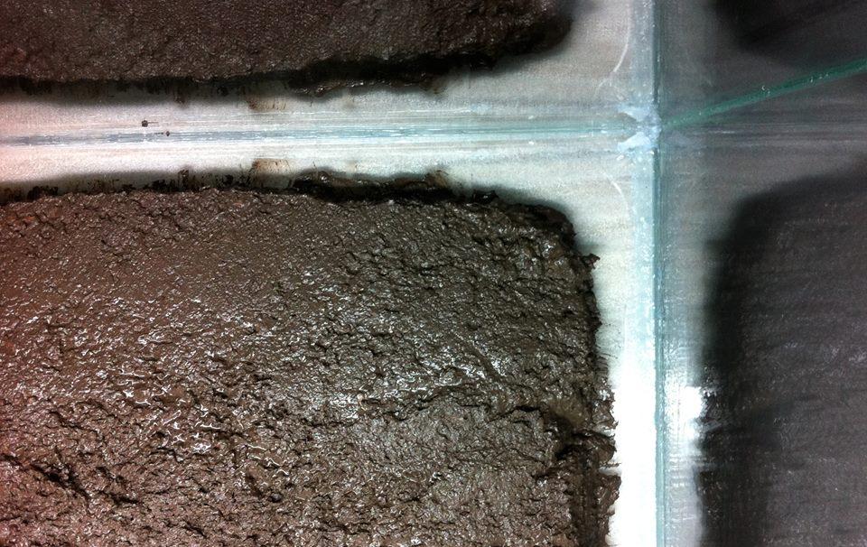 Nền trộn thủy sinh nên cách thành kính 3-4 cm để tránh xì nền