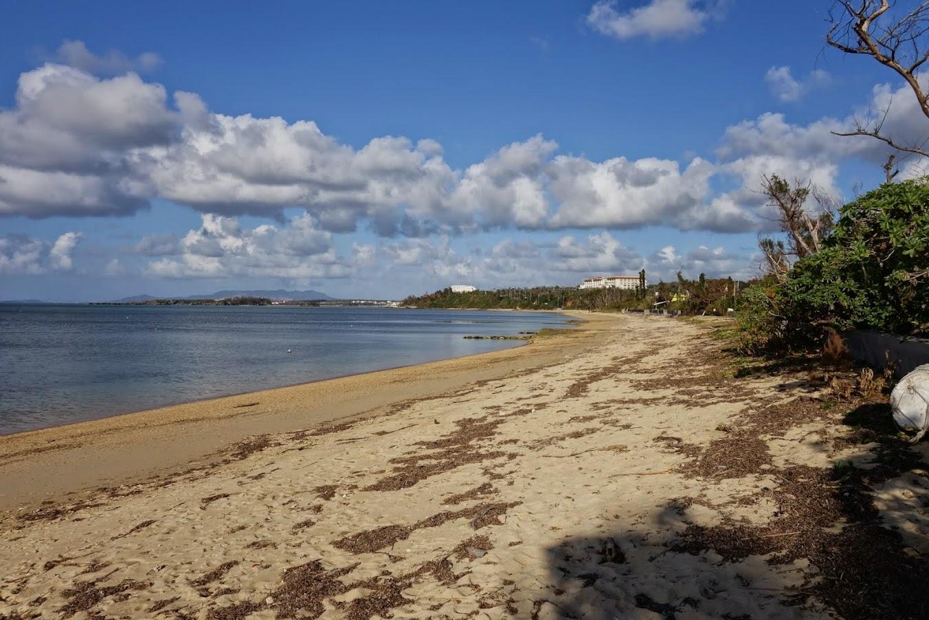 Tancha beach