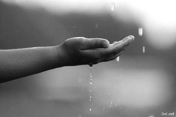 ảnh buồn đưa tay hứng những giọt mưa
