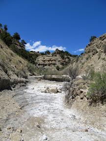 North Fork of Garley Canyon