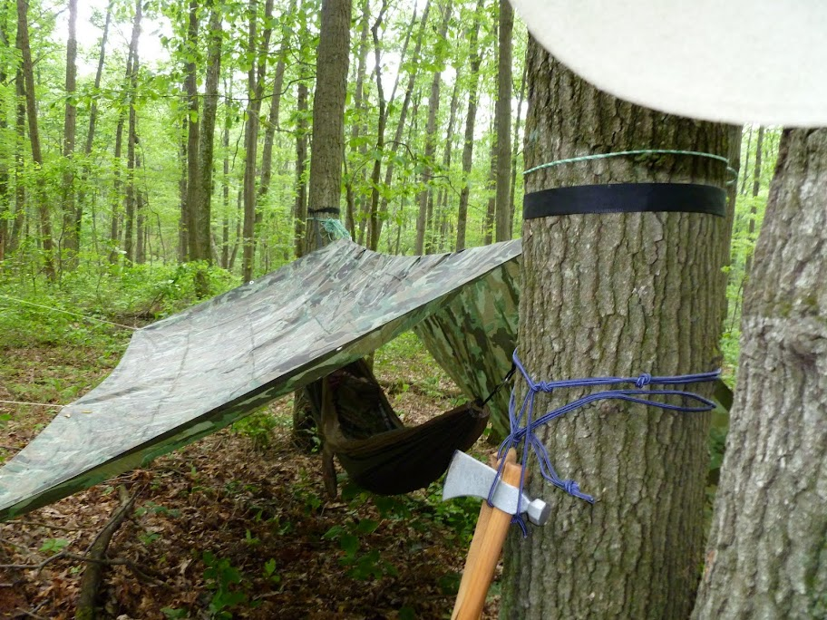 Hammock and Tarp Camping