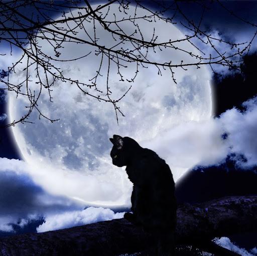 lunar deity picture