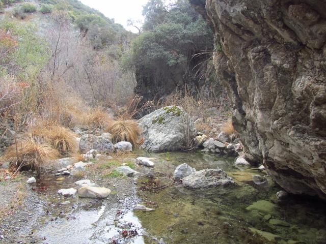 a pool under a rock