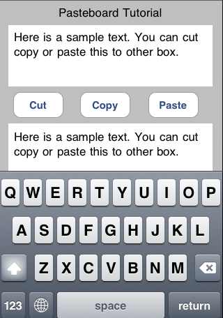 copy and paste text pictures iphone