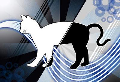 Fedora 19 será Schrödinger's Cat
