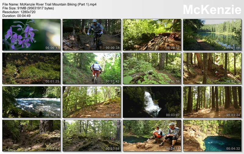 Snapshots for McKenzie River Trail