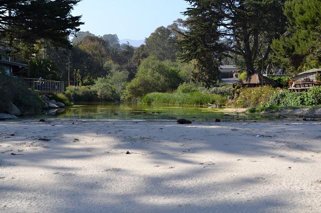 Rincon Creek, or lagoon