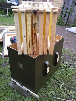 оснащение ловушки для пчел