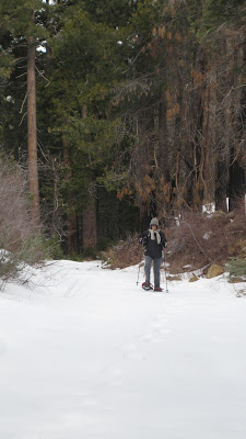 yep--it's snowshoe time!