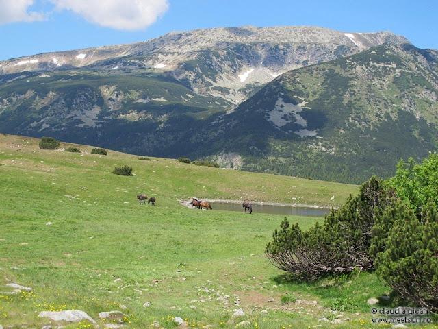 Retezat Trail Race - peisaje Retezatul Mic