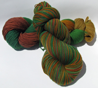 Narnia on Morgaine Superwash Merino Fingering - Trim Option & Penny Ship