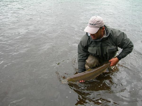 Anton Devolviendo un Roxu a las aguas del Dee/ Release old Salmon to River Dee