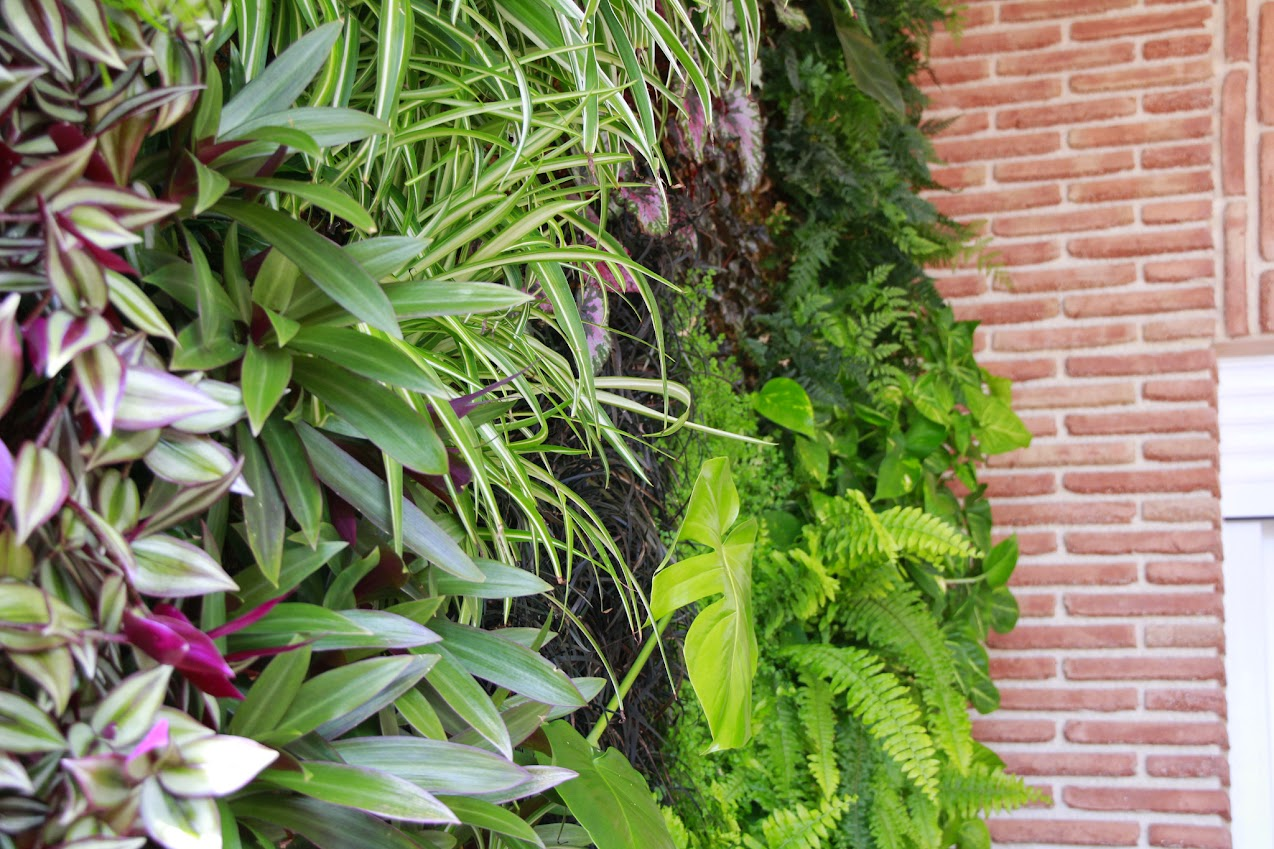 jardn vertical interior jardines verticales interiores ecosistema pared vegetal verde green wall
