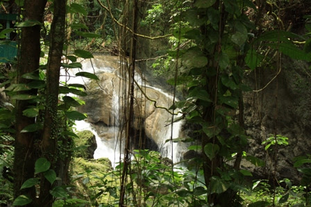 Somerset Falls, Port ANtonio, Jamaica