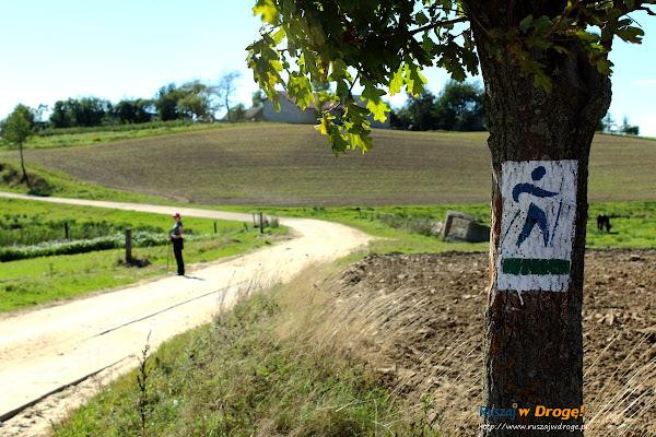 Trasy Nordic Walking w Pomieczynie - oznakowanie