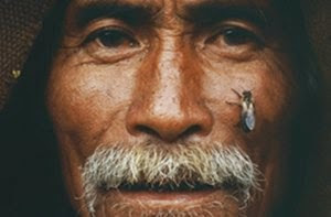 Пчеловодство Непала